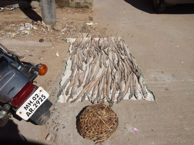 Dried fish for sale in Fisherman's Colony, Mahabalipuram